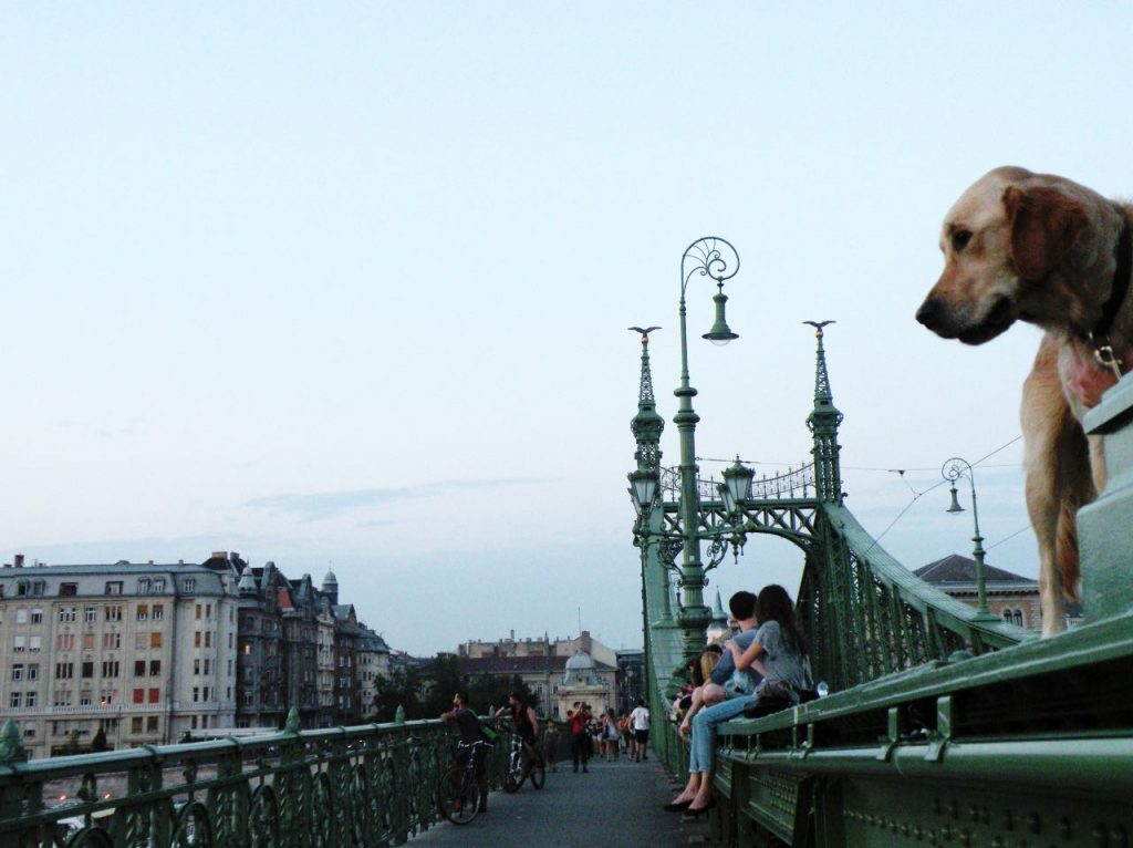 FunnyVegan Viaggi Budapest