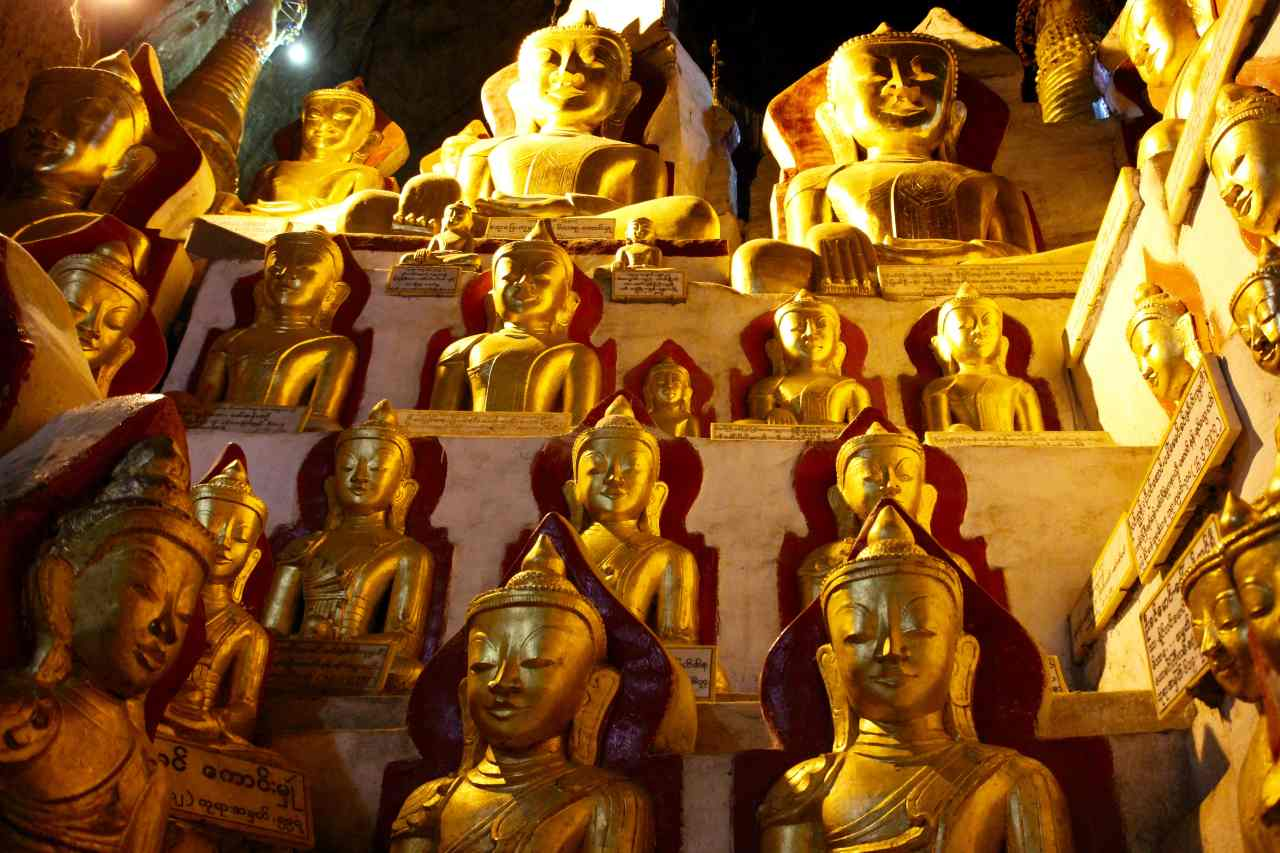 Funny Vegan lifestyle Myanmar 5