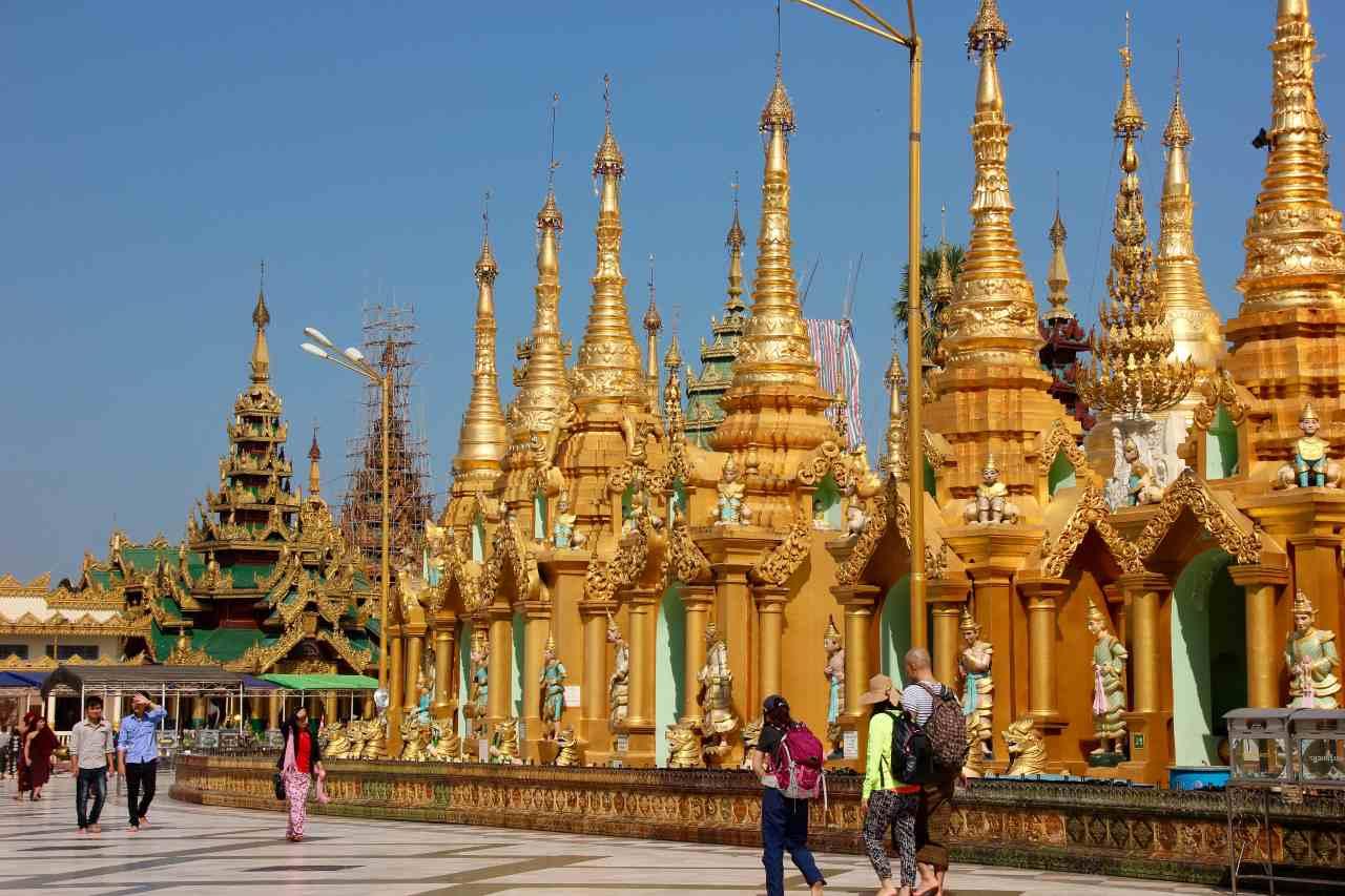 Funny Vegan lifestyle Myanmar 8